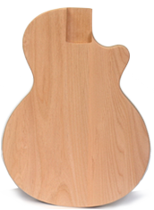 Reedsdale — Inspired by classic LP-style guitars